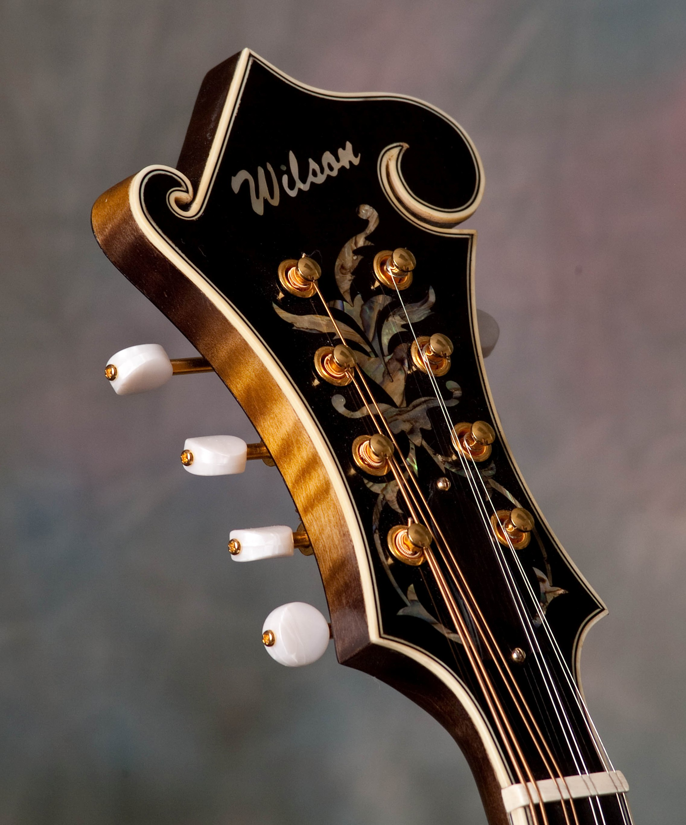 A Wilson WF-5 peghead, top bound with gold hardware, ivoroid buttons and fern inlays